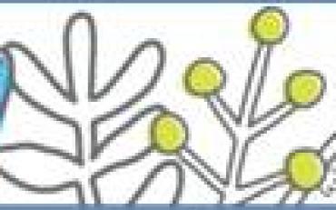Детская SLASH Флора изображение 2
